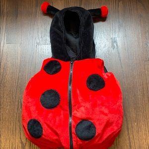 Lady bug Halloween custom